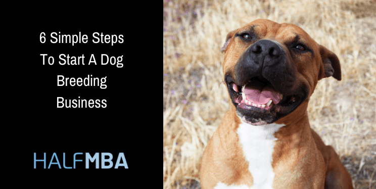 6 Simple Steps To Start A Dog Breeding Business 7