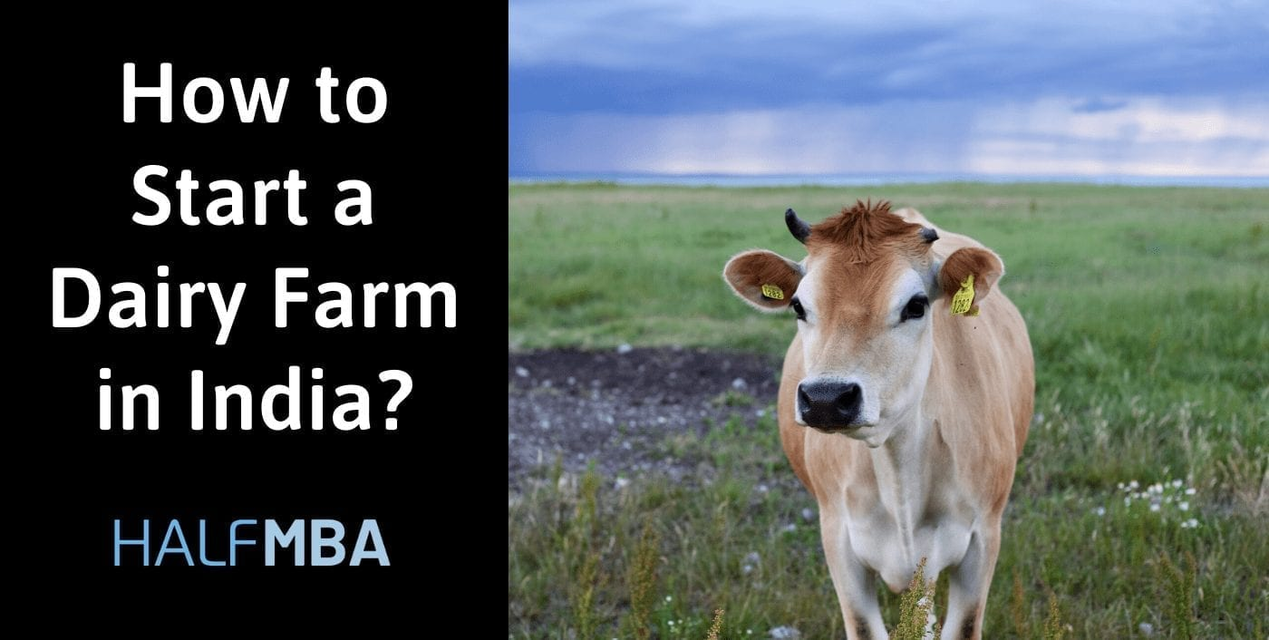 How to Start a Dairy Farm in India? 22