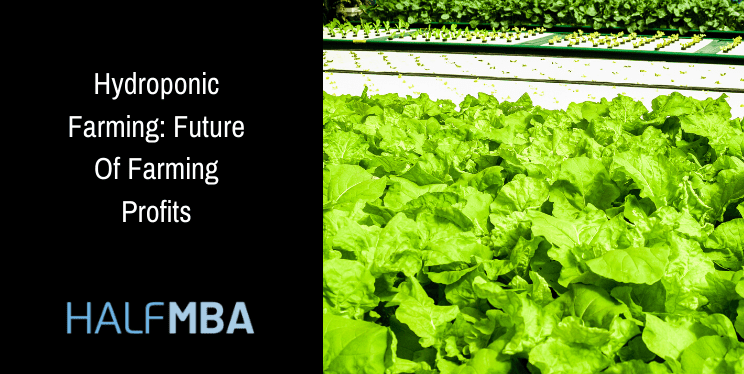 Hydroponic Farming: Future Of Farming Profits 2